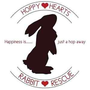 Hoppy Hearts Rabbit Rescue