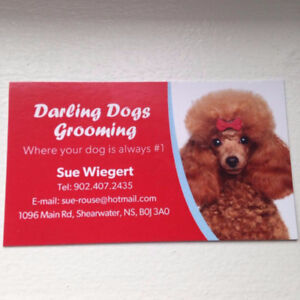 Dog Bather Needed! Darling Dogs Grooming