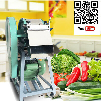 Fruit Vegetable Potato Carrots Slicer Shred Cutting or Diced Machine 220V