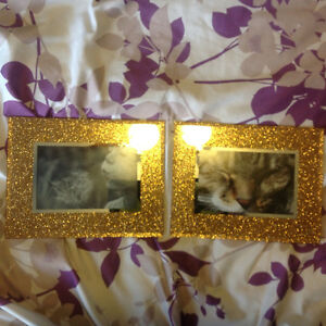 Gold Glitter Picture Frames