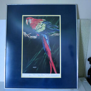 Signed Numbered Barry Barnett Tropic of Vedra Macaw Parrot