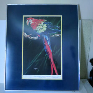 Signed Numbered Barry Barnett Tropic of Vedra Macaw Parrot Kitchener / Waterloo Kitchener Area image 1