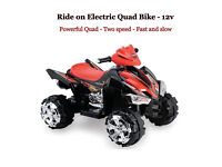 Ride on 12v electric Battery Kids quad bike / car