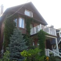 Newly renovated and bright bachelor apartment - Avail Oct 1 -