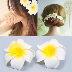HAWAIIAN HAIR CLIPS BRAND NEW HALF DOLLAR STORE PRICES