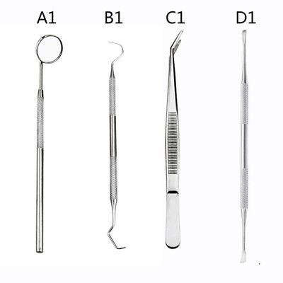 Dentist Tool Stainless Steel Tarter Dental Pick Personal Hygiene Set Remover