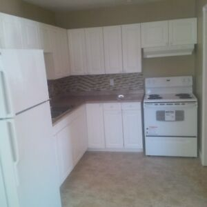 Beautiful 3 Bedroom Apartment in Wolfville, Close to Acadia