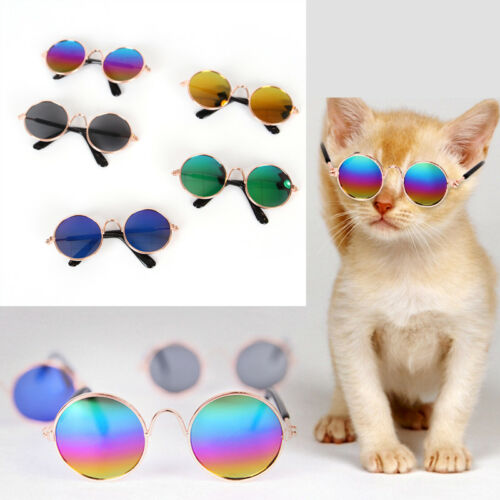Small Pet Cat Dog Sunglasses Glasses Costume Pet Toy Kitten Outfit Clothes Funny