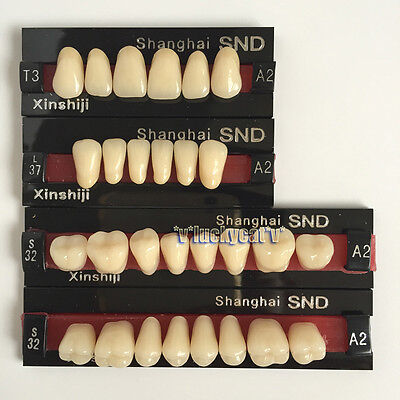 Dental Acrylic Resin Teeth Two-layer A2 Full Mouth Set T3 L37 S32 Bestsell
