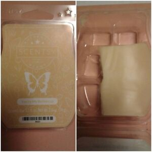 Scentsy's You're My Buttercup - 4 cubes - with warmer purchase