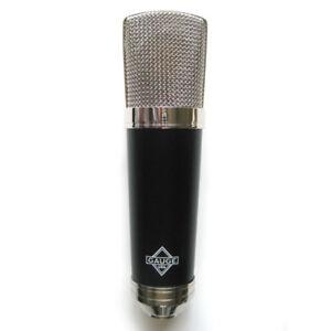 Gauge microphone