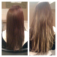Hair extensions only $299 spring special !!