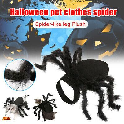 Halloween Spinnen Haustier Kostüm Cosplay Kleidung Hundewelpen (Kostüm Haustier)