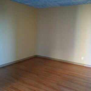 GREAT PRICE!!! BRIGHT 1 BEDROOM SUITE FOR RENT!!!
