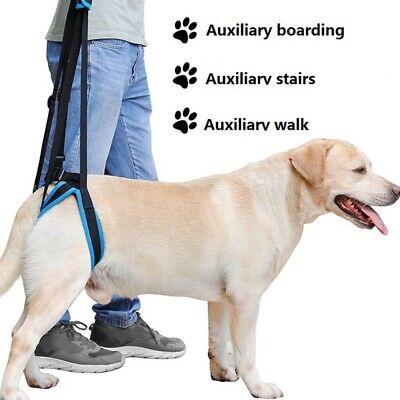 - Pet Dog Leg Support Rear Lifting Brace Harness Aid Assist Tool Rehab Harness New