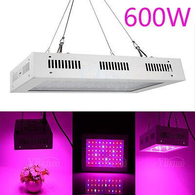 600W Full Spectrum LED Plant Grow Light Veg Bloom Lamp Indoor Greenhouse Garden