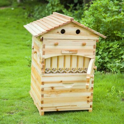 Smart Automatic Wooden Beehive Honey Flowing Bee Hive With 7 Pcs Plastic Beehiv