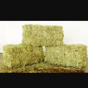 Looking for a hay supplier
