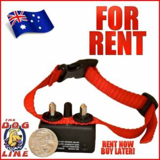 Bark Collar Hire - Then buy ! 2 Week Trial then Buy Yokine Stirling Area Preview
