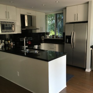 Kitchen Reno Sale - cabinetry, granite counter tops, and more!