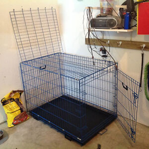 Wire Dog Kennel  Large Blue