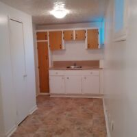 Spacious one bedroom apt. on 7th St. East available immediately