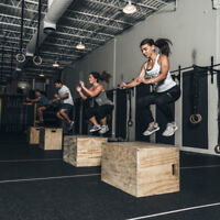 Personal Trainer in Vaughan Offering 3 Free Sessions