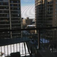 Downtown one bedroom apt, webb place, connected to Portage Place