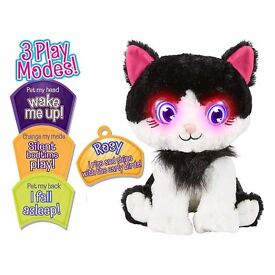 Bright Eyes Rosy Kitty Plush Toy with Box cost £25