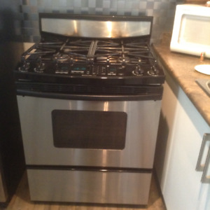 Stainless Steel Gas Stove Range