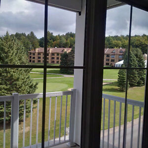 Horseshoe Resort: Luxury PENTHOUSE condo: brand New :ski in/out
