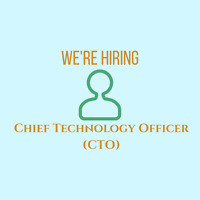 Chief Technology Officer (CTO) for Local Startup