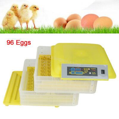 96 Digital Egg Incubator Hatcher Temperature Control Automatic Egg Turning 80W