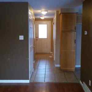 Bright and Spacious 3 Bedroom house for rent Kitchener / Waterloo Kitchener Area image 3