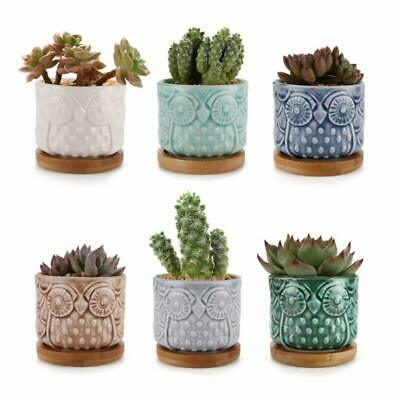 6 Pcs Small Ceramic Plant Pots 2.6'' with Free Bamboo Tray For Succulent Cactus