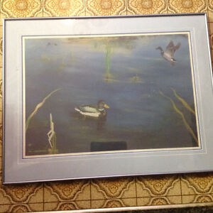 D.j. Brine duck print wildlife 1992  print framed . 25 dollars Kitchener / Waterloo Kitchener Area image 1