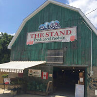 The Stand is Hiring! Part-Time Sales Associate