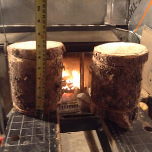 Nesting boxes, natural pine logs