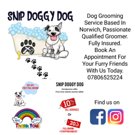 Dog Grooming Service | SNIP DOGGY DOG
