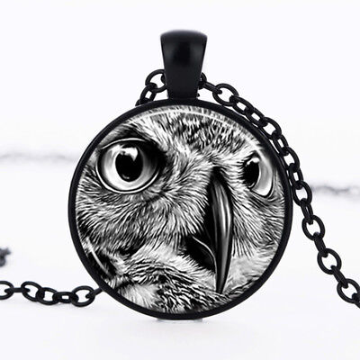 Owl photo Black Dome Glass Cabochon Necklace chain Pendant #354 - Owl Photo