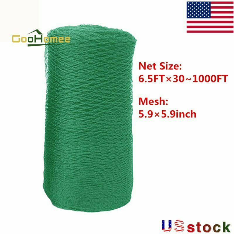 30/50/100/164/250/328/1000FT Green Plastic Trellis Netting For Climbing Plants