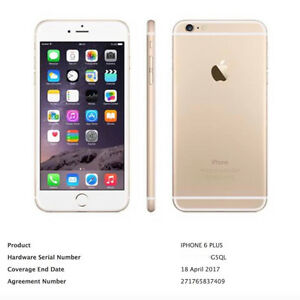 Unlocked Gold iPhone 6 64GB with AC+