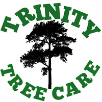 CHEAP TREE REMOVAL's (403)667-5750