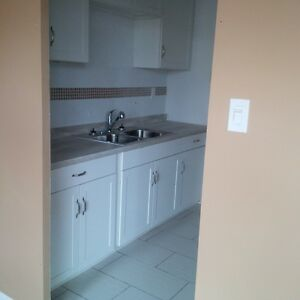 LARGE BRIGHT ONE BEDROOM APARTMENT - HAMILTON MOUNTAIN