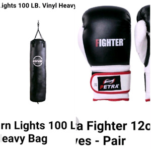Punching bag n gloves for sale