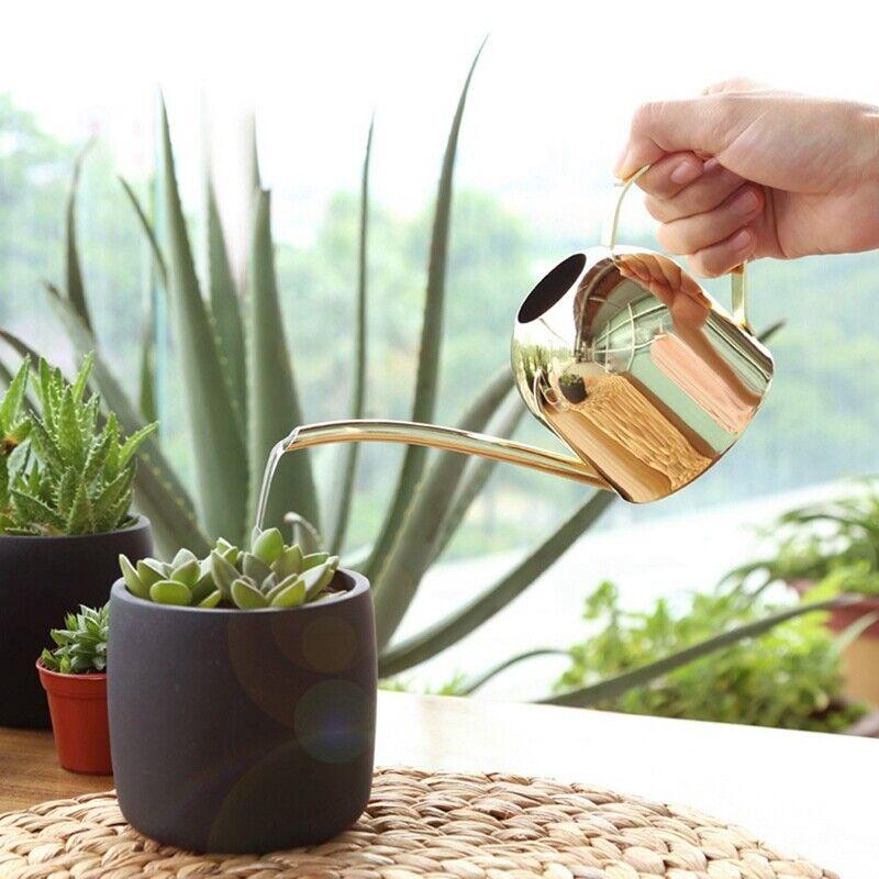 500ml Indoor Small Stainless Steel Watering Can Pot Garden S