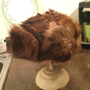 Vintage muskrat trapper hats for sale Regina Regina Area image 3
