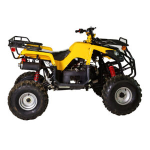 CHRISTMAS IS COMING AND THE SALES ARE ON FOR ATV'S & ESCOOTERS