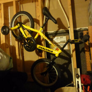 Brand New bicycle with training wheels