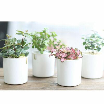 Self-watering Plant Flower Pot Planter House Garden For Home
